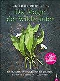 Wildkräuter Kochbuch: Die Magie der Wildkräuter. Eine Kräuterwanderung durch das ganze Jahr. Erkennen, sammeln, zubereiten - Mit Extraheft zum Mitnehmen. Wildkräuter bestimmen, Rezepte Wildpflanzen.
