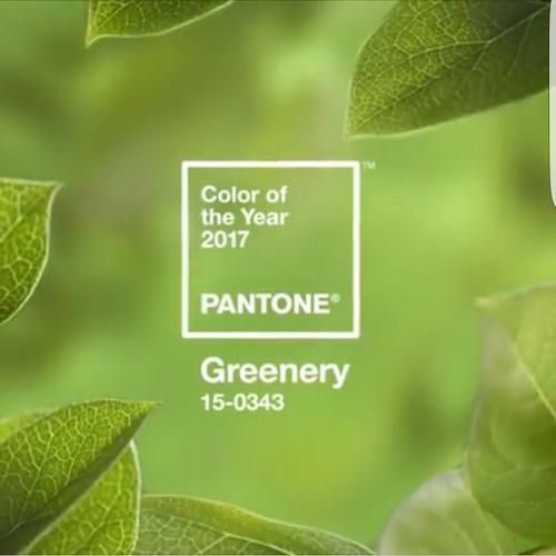 pantone-farbe-2017